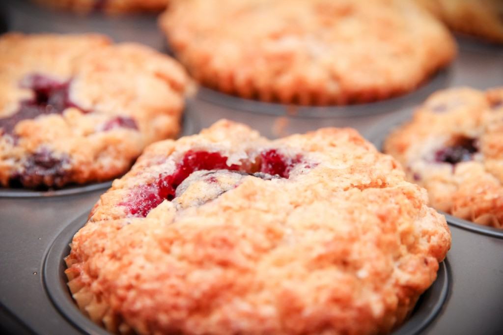 Tri-Berry Muffins | Festively Made